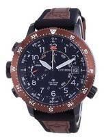 Citizen Promaster Altichron Land Eco-Drive BN4049-11E 200M Diver's Men's Watch